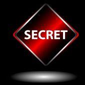 Secret Icon