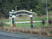 Kawakawa Sign By Hunterwasser