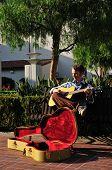 Musician Under Tree
