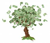 Money Savings Tree