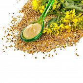 Mustard sauce  in spoon and mustard flower in spoon isolated on white background
