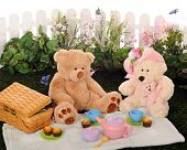 image of teddy bear  - A mama pappa and baby Teddy bear having a picnic with a child - JPG