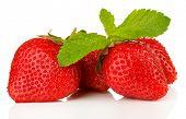 Fresas dulces y menta, aislado en blanco