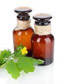 image of celandine  - Blooming Celandine with medicine bottles isolated on white - JPG