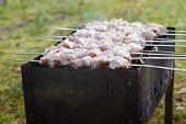 picture of brazier  - cooking pork shashlik on skewer in brazier outdoors - JPG