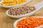 Different types of lentils on porcelain spoons