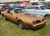 Pontiac Trans Am Copper Side View