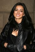 Noureen DeWulf  at the Summer Stars Party hosted by InTouch Weekly and ISH. Social Hollywood, Hollywood, CA. 05-22-08