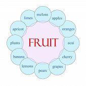 Fruit Circular Word Concept