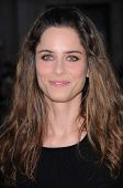 Amanda Peet  at the World Premiere of