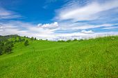 image of pieniny  - Beautifull View To Slovak Landscape - JPG