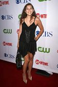 Bonnie Mercado  at the CBS, CW and Showtime Press Tour Stars Party, Boulevard3, Hollywood, CA. 07-18