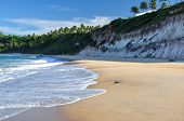 picture of natal  - Beach of Pipa with cliffs and palms in background Natal  - JPG