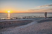 picture of faro  - Summer evening at Langhammars on Faro island in Sweden - JPG