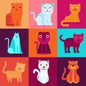 Vector Set Of 9 Flat Cat Illustrations
