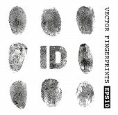 picture of fingerprint  - Set of vector fingerprints - JPG