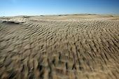 Desert Dunes In Sahara