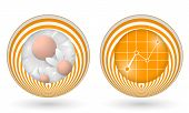 Set Of Two Orange Icons With Flowers And Graph