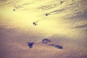 Vintage Nature Background Of Footprint On Sand.