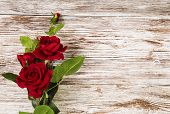 Rose Flowers, Red On Wooden Grunge Background, Floral Card Copy Space