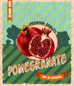 Pomegranate retro poster