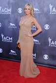 LOS ANGELES - APR 06:  Miranda Lambert arrives to the 49th Annual Academy of Country Music Awards