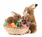 Easter eggs and bunnies.