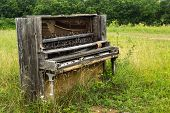 Abandoned Piano in the Meadow