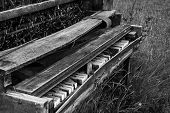 Old Piano in the Meadow