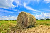 haystack on the field in summer day