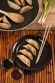 Chinese Style Pot Stickers Plated Beside Cooking Pan
