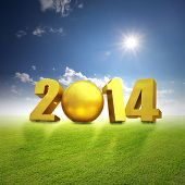 2014 with soccer on grass