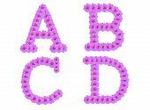 Alphabet A B C D, Cosmos Flower Alphabet Isolated On White