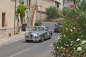 Alfa Romeo 1900 Super Sprint Pinin Farina (1955) In Mille Miglia 2014