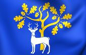 Flag Of Berkshire County, England.