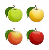 Ripe apple with green leaf. Set of Eps10 vector illustration. Isolated on white background