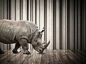 rhino walk on abstract 3d architecture indoor