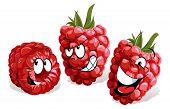 Cool Raspberry Cartoon