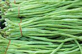 Long Bean In The Market