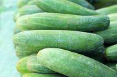 Fresh Cucumber In The Market
