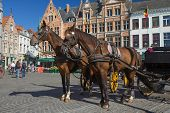 Horse-drawn Carriage In Bruges