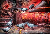 stock photo of nepali  - Doves near Bhairab statue in red color at Durbar Square in Kathmandu Nepal