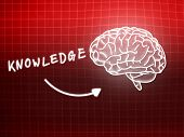 Knowledge Brain Background Knowledge Science Blackboard Red