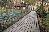 West Lake Park In Hangzhou City, China. Wooden Pathway