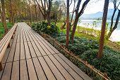 Wooden Pathway, West Lake Park In Hangzhou
