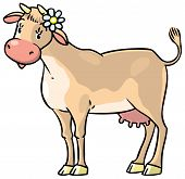 Funny Cow
