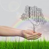 Concept or conceptual tree media word cloud tagcloud in man or woman hand on rainbow sky grass background