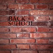 vector texture of red brick wall. back to school