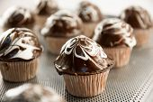 Delicious Sweet Chocolate Muffins On A Tray