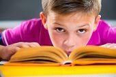 Cute Schoolboy Reading In Classroom